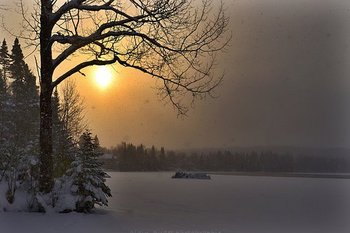 winter-landscape-1980194__340.jpg